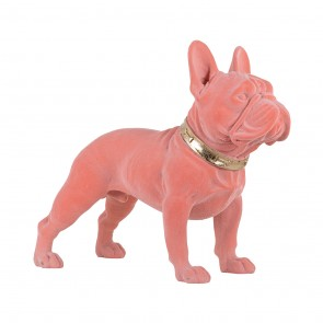 Pes Spike ružový
