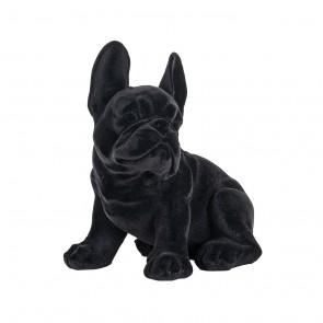 Pes Miro čierny