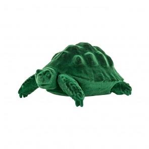 Korytnačka Pokey zelená